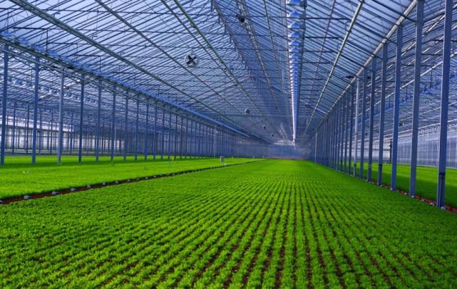 smart-green-house