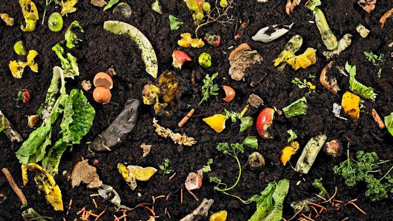 quartz-basf-compost-edit6